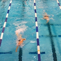 Bahnen schwimmern