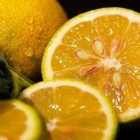Zitronen und Orangen